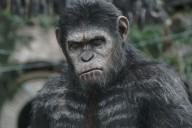 la-planete-des-singes-photo-film